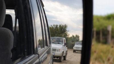 Safari 4X4 en Camargue sauvage
