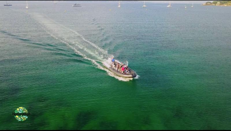Un bateau dans la mer